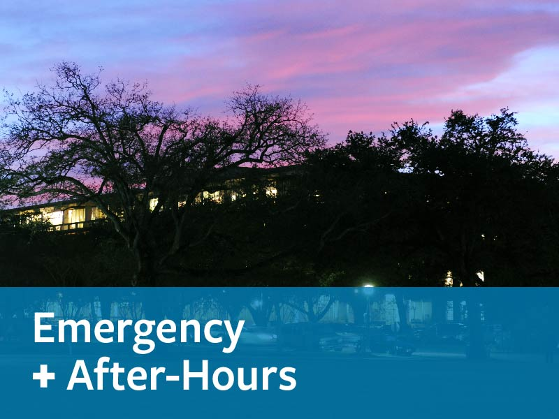 Emergency & After Hours Care - Local Resources